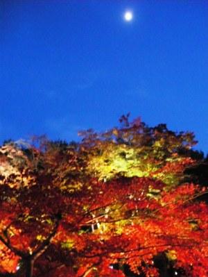 高台寺のライトアップと月と