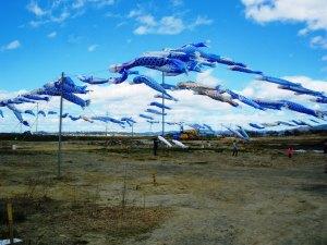 20130504 東松島市大曲浜の青い鯉のぼり
