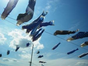 21030504 青い鯉のぼり
