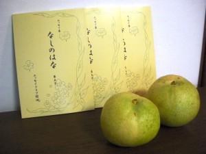 「なしのはな」の表紙は、梨の実と同じ色で……