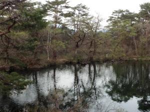 柳沼の向こう側、二人が歩いてきた。