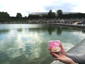 公園の八角形の池と、マカロン。向こうに見えるのが、オランジュリー美術館。